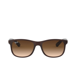 Ray-Ban® Sunglasses: Andy RB4202 color Matte Brown On Brown 607313.