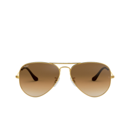 Ray-Ban® Sunglasses: Aviator Large Metal RB3025 color Arista 001/51.