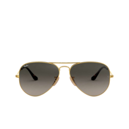Ray-Ban® Sunglasses: Aviator Large Metal RB3025 color Arista 181/71.