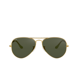 Ray-Ban® Sunglasses: Aviator Large Metal RB3025 color Arista L0205.
