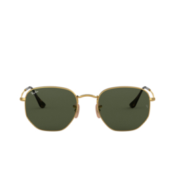 Ray-Ban® Sunglasses: Hexagonal RB3548N color Arista 001.