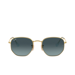 Ray-Ban® Sunglasses: Hexagonal RB3548N color Arista 91233M.