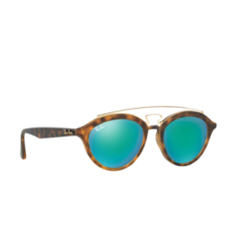 ray-ban-new-gatsby-ii-rb4257-60923r (1)