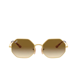 Ray-Ban® Sunglasses: Octagon RB1972 color Arista 914751.