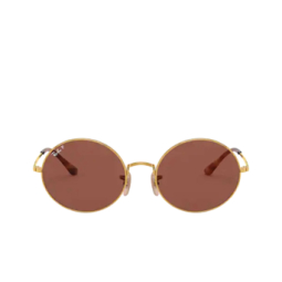 Ray-Ban® Sunglasses: Oval RB1970 color Arista 9147AF.