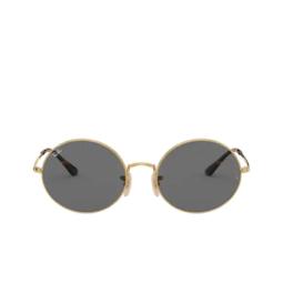 Ray-Ban® Sunglasses: Oval RB1970 color Arista 9150B1.
