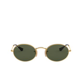Ray-Ban® Oval Sunglasses: Oval RB3547N color Arista 001.