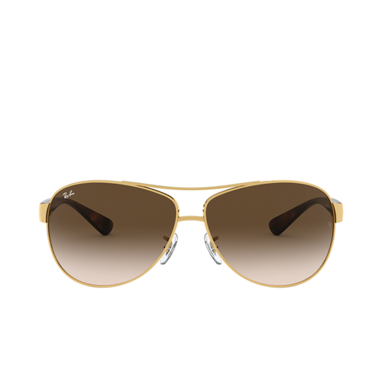 Ray-Ban® Aviator Sunglasses: RB3386 color Arista 001/13.