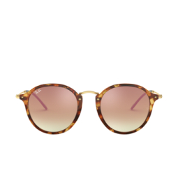 Ray-Ban® Sunglasses: Round RB2447 color 11607O.