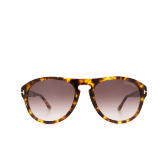 Tom Ford® Aviator Sunglasses: Austin-02 FT0677 color Light Havana 52T.