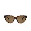 Balenciaga® Cat-eye Sunglasses: BB0149S color Havana 002 - product thumbnail 1/2.