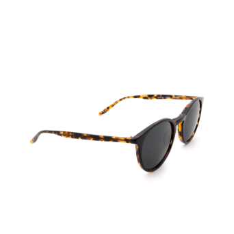 Barton Perreira® Round Sunglasses: Princeton BP0031 color Black & Havana 0DB.