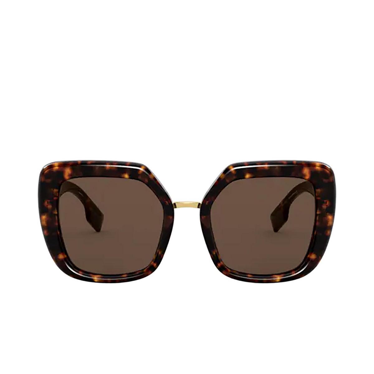 Burberry® Square Sunglasses: Charlotte BE4315 color Dark Havana 300273 - front view.