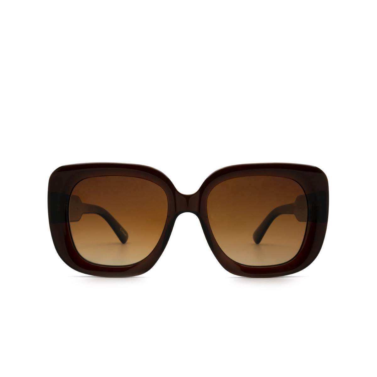Chimi® Square Sunglasses: 10 color Brown - front view.