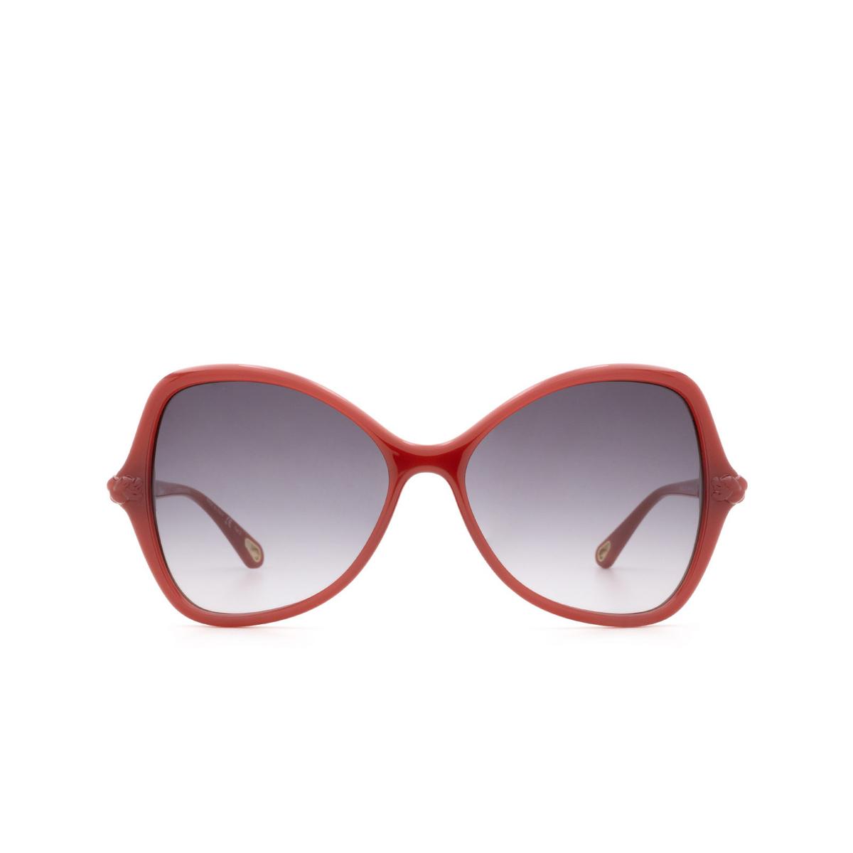 Chloé® Butterfly Sunglasses: CH0001S color Orange 004 - front view.