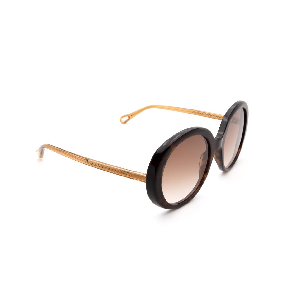 Chloé ® Oval Sunglasses: CH0007S color Havana 004.