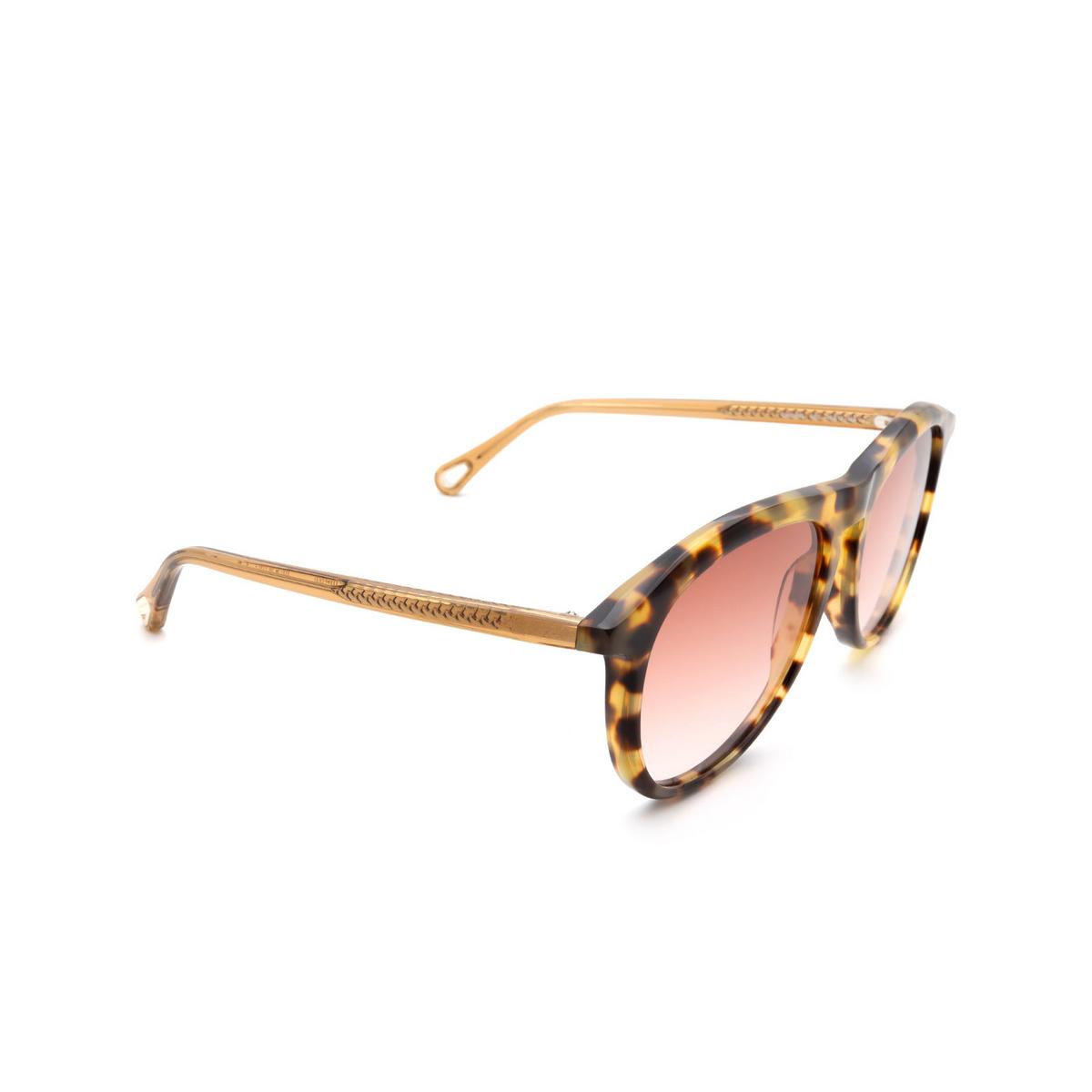 Chloé ® Aviator Sunglasses: CH0009S color Havana 002.