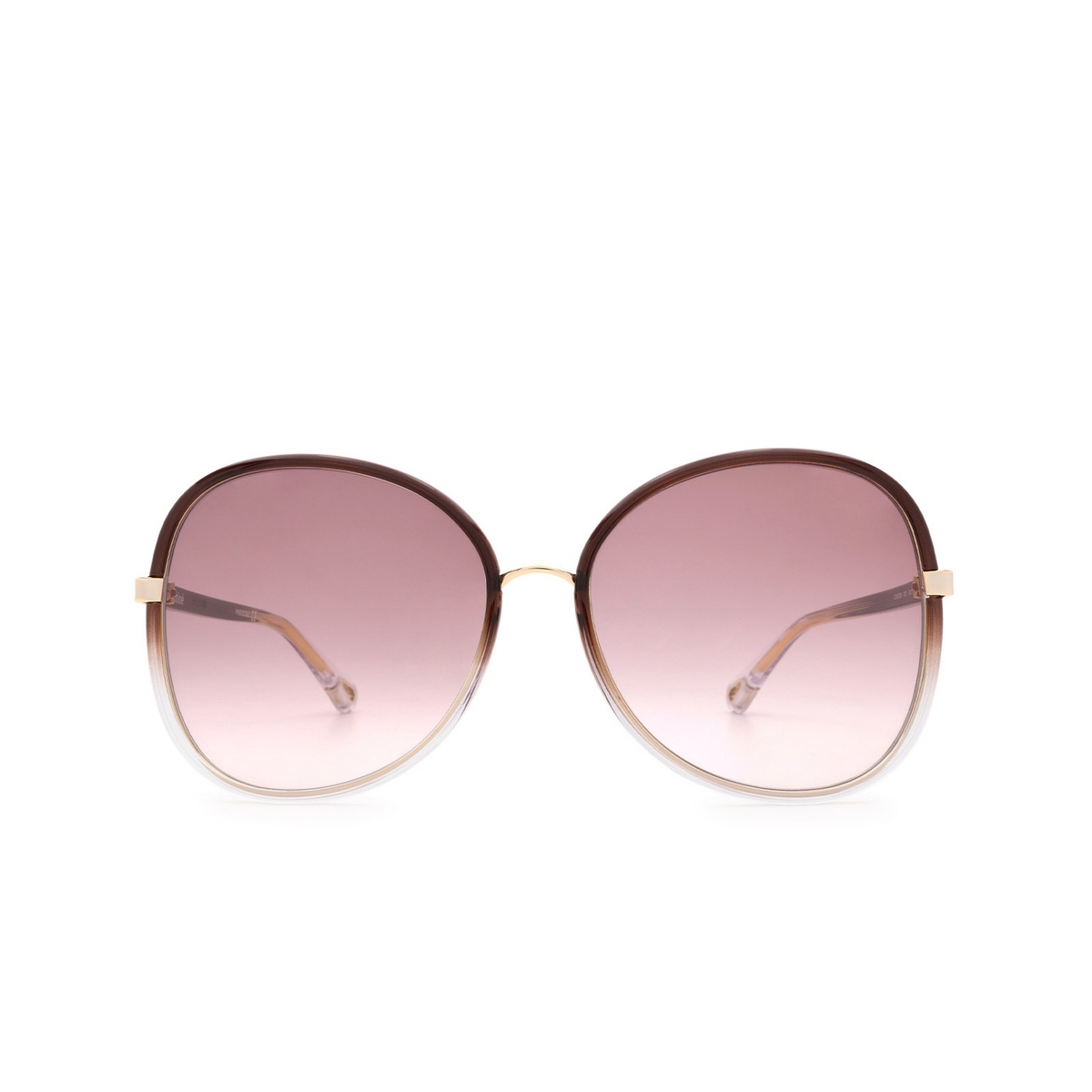 Chloé® Butterfly Sunglasses: CH0030S color Brown 003 - front view.