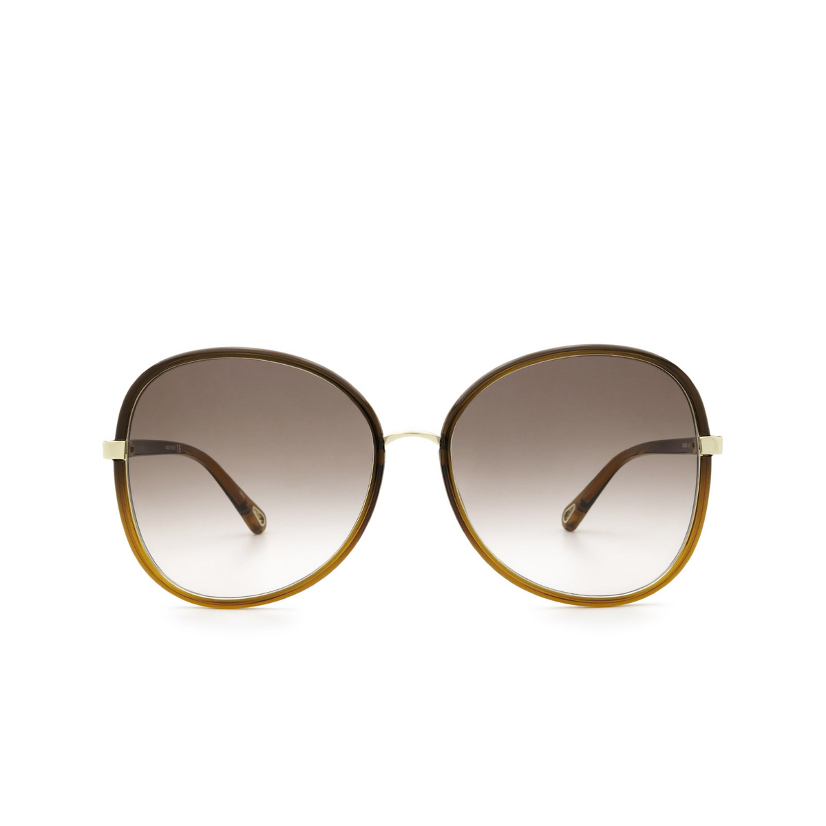 Chloé® Butterfly Sunglasses: CH0030S color Brown 005 - front view.