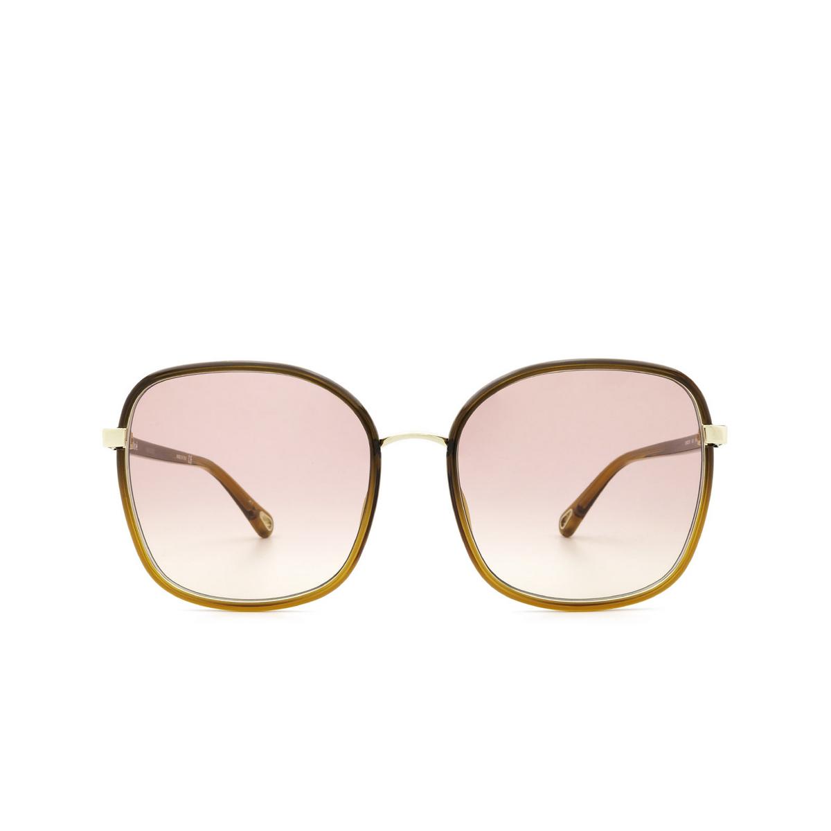 Chloé® Square Sunglasses: CH0031S color Brown 006 - front view.