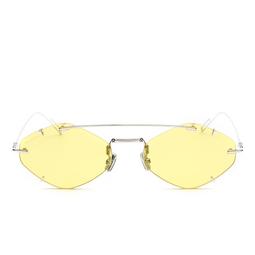 Dior® Sunglasses: Diorinclusion color Silver 010/J9.