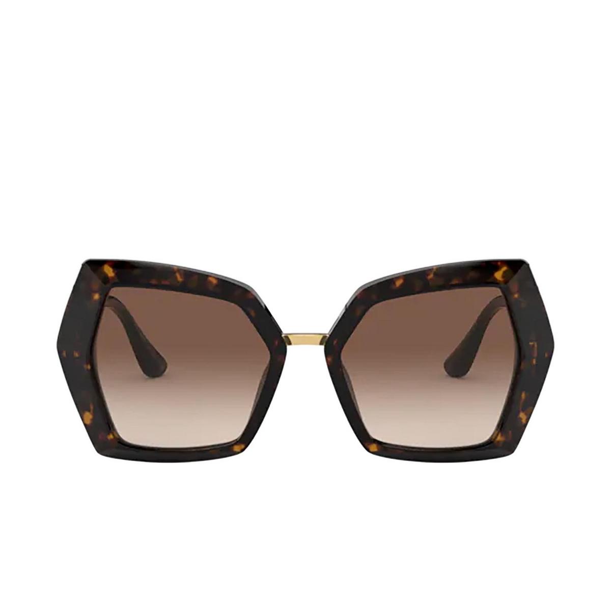 Dolce & Gabbana® Butterfly Sunglasses: DG4377 color Havana 502/13.