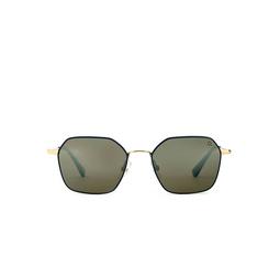 Etnia Barcelona® Sunglasses: Hudson color Gdbl.