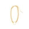 Frame Chain HOOKER YELLOW GOLD  (1)