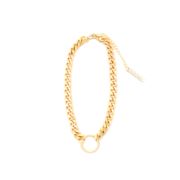 Frame Chain HOOKER YELLOW GOLD  (1)