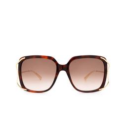 Gucci® Sunglasses: GG0647S color Havana 002.