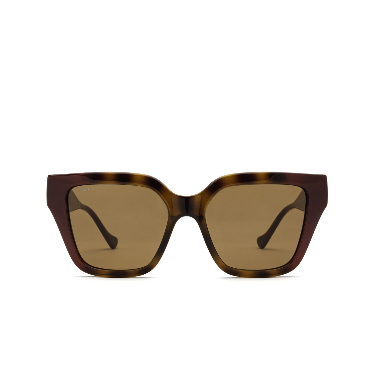 Gucci® Cat-eye Sunglasses: GG1023S color Havana & Burgundy 003 - front view.