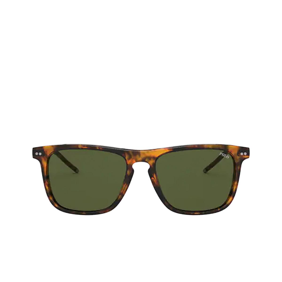 Polo Ralph Lauren® Square Sunglasses: PH4168 color Shiny Jerry Havana 501771.