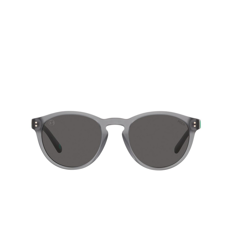 Polo Ralph Lauren® Round Sunglasses: PH4172 color Matte Transparent Dark Grey 595387.