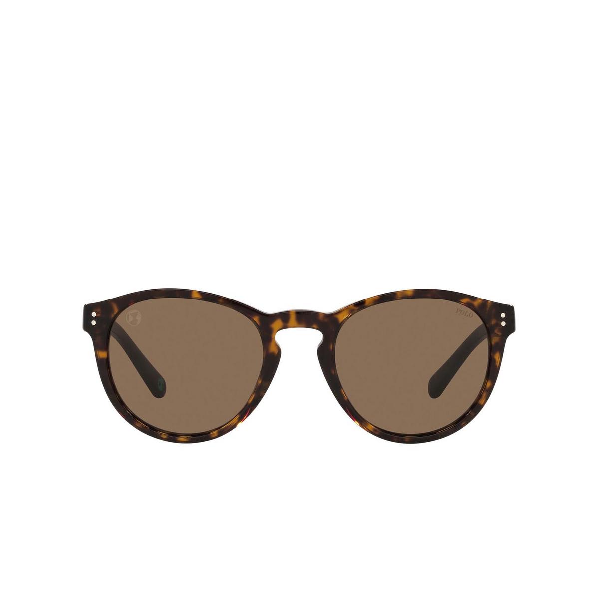 Polo Ralph Lauren® Round Sunglasses: PH4172 color Shiny Dark Havana 595473.