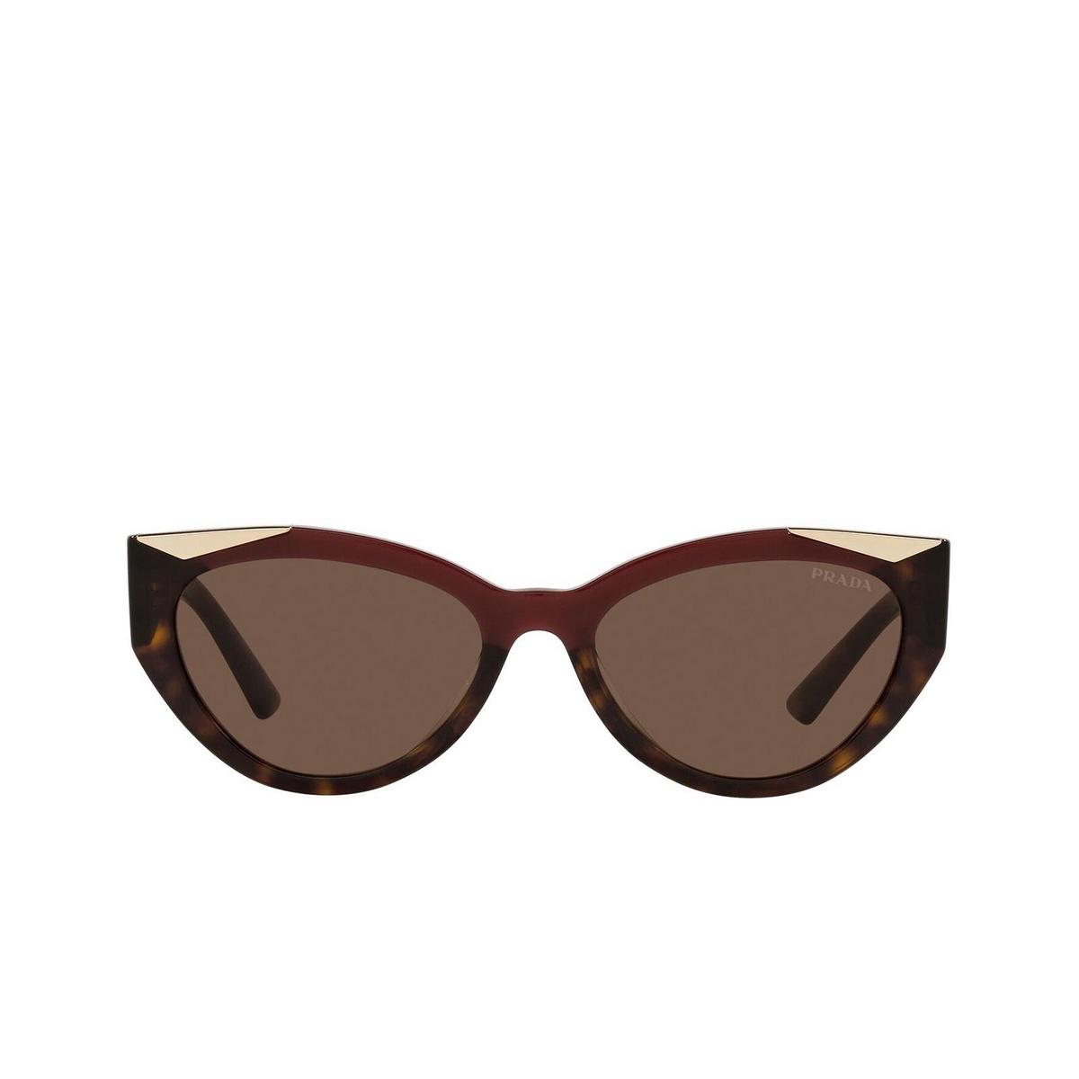 Prada® Cat-eye Sunglasses: PR 03WS color Cherry/dark Havana 07C0D1.