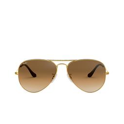Ray-Ban® Sunglasses: Aviator Large Metal RB3025 color Arista 001/51.