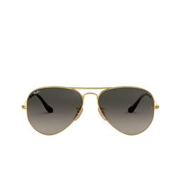 Ray-Ban® Sunglasses: Aviator Large Metal RB3025 color Arista 181/71.