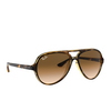 ray-ban-cats-5000-rb4125-710-51 (1)