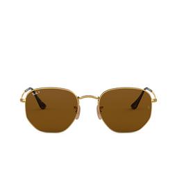 Ray-Ban® Sunglasses: Hexagonal RB3548N color Arista 001/57.