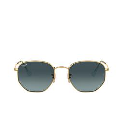 Ray-Ban® Sunglasses: Hexagonal RB3548N color Arista 91233M.