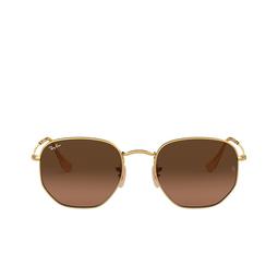 Ray-Ban® Sunglasses: Hexagonal RB3548N color Arista 912443.