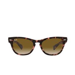 Ray-Ban® Sunglasses: Laramie RB2201 color Pink Havana 133451.