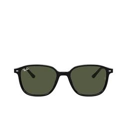 Ray-Ban® Sunglasses: Leonard RB2193 color Black 901/31.