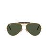 Ray-Ban® Aviator Sunglasses: Outdoorsman Ii RB3029 color Arista 181 - product thumbnail 1/3.