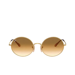 Ray-Ban® Oval Sunglasses: Oval RB1970 color Arista 914751.