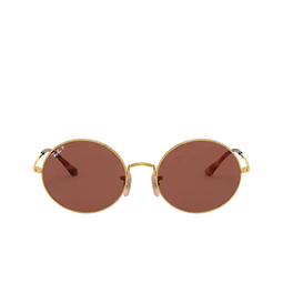 Ray-Ban® Oval Sunglasses: Oval RB1970 color Arista 9147AF.