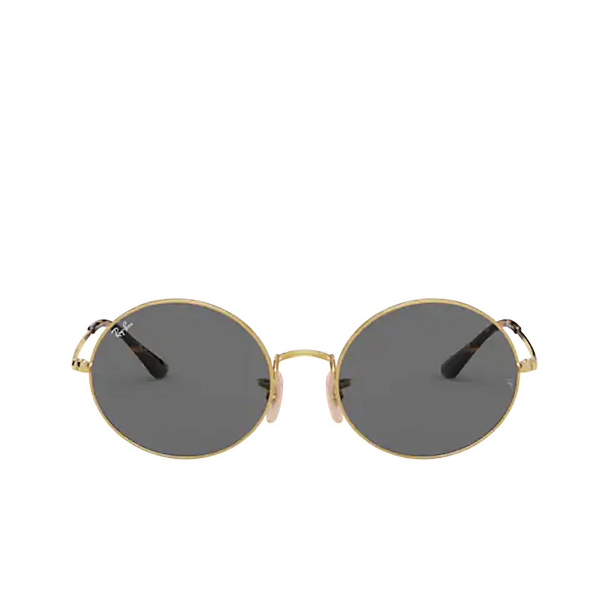 Ray-Ban® Oval Sunglasses: Oval RB1970 color Arista 9150B1.