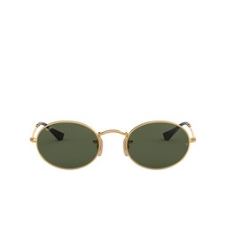 Ray-Ban® Sunglasses: Oval RB3547N color Arista 001.