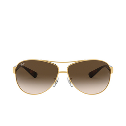 Ray-Ban® Sunglasses: RB3386 color Arista 001/13.