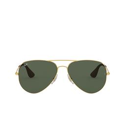 Ray-Ban® Aviator Sunglasses: RB3558 color Arista 001/71.
